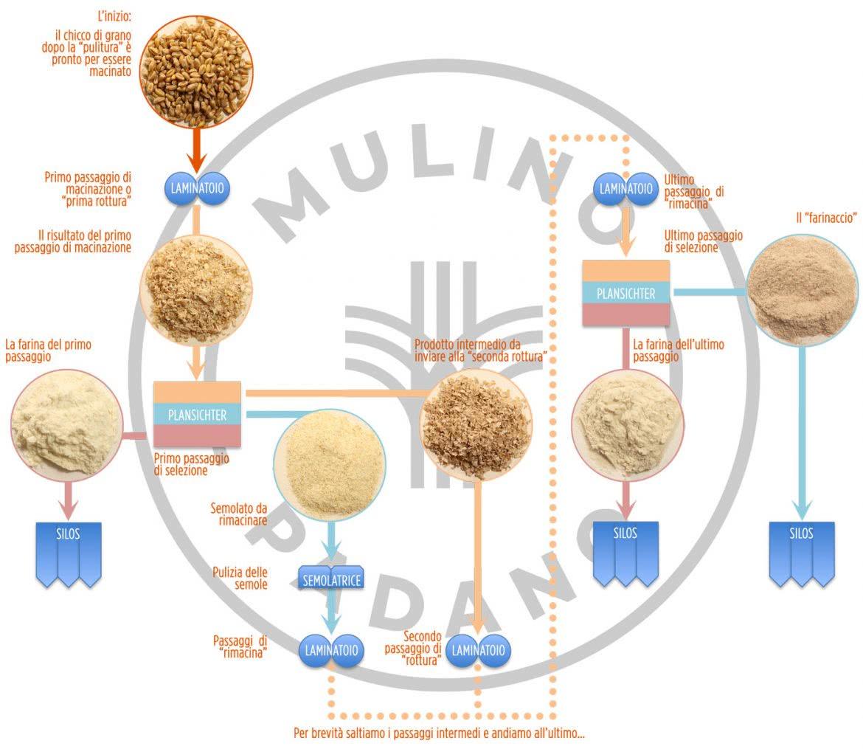 trasformazione del grano in farina: il diagramma di macinazione