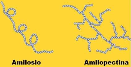 amilosio_mulino_padano